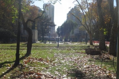 IMG_7195-mitre-plaza-view-leaves-autum