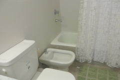 Closeup of toilet, bidet and bathtub