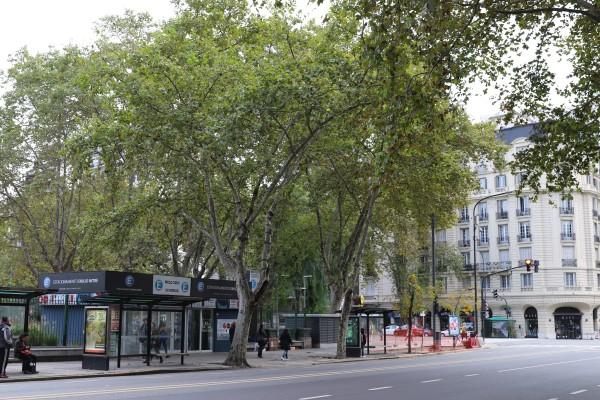 Teniente General Emilio Mitre plaza and Lsa Heras and Pueyrredon avenues corner